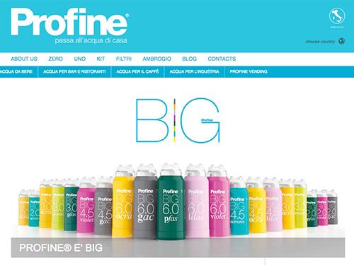 Profine – website